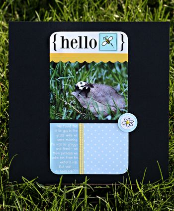 04.10.10 - hello bee write click scrapbook