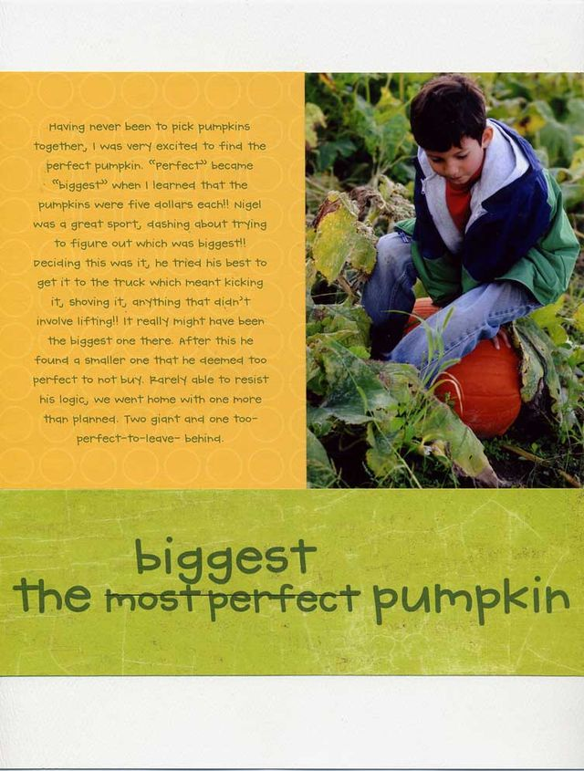 the biggest pumpkin